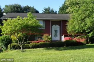 11820 Roosevelt Road, Fredericksburg, VA 22407 (#SP9940141) :: Pearson Smith Realty