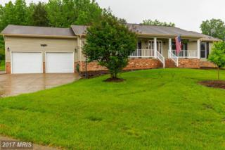 11709 Lottie Court, Fredericksburg, VA 22407 (#SP9940804) :: Pearson Smith Realty