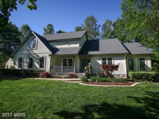 10908 Tapp Point, Spotsylvania, VA 22551 (#SP9941214) :: Pearson Smith Realty