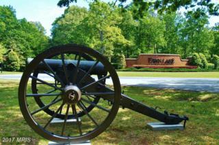 11413 Bluffs Ridge, Spotsylvania, VA 22551 (#SP9942281) :: Pearson Smith Realty