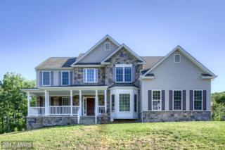 40 Noel Drive, Fredericksburg, VA 22408 (#SP9943299) :: Pearson Smith Realty
