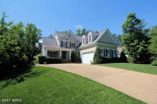 10916 Chatham Ridge Way, Spotsylvania, VA 22551 (#SP9944998) :: Pearson Smith Realty