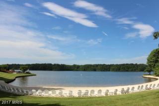 11304 Hidden Cove, Spotsylvania, VA 22551 (#SP9945526) :: Pearson Smith Realty