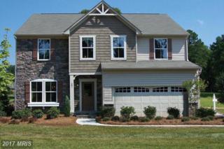 135 Hermitage Drive, Fredericksburg, VA 22407 (#SP9946816) :: Pearson Smith Realty