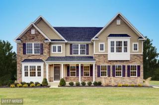 7831 Hermitage Drive, Fredericksburg, VA 22407 (#SP9946822) :: Pearson Smith Realty