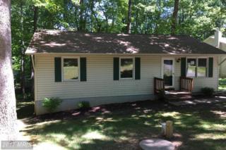 11113 Stockade Drive, Spotsylvania, VA 22551 (#SP9948151) :: Pearson Smith Realty