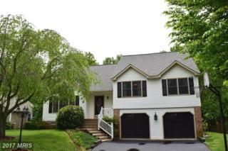5814 Danielle Drive, Fredericksburg, VA 22407 (#SP9948301) :: Pearson Smith Realty