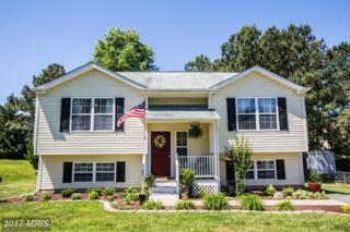 8808 New Castle Court, Fredericksburg, VA 22408 (#SP9948685) :: Pearson Smith Realty