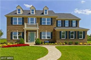 120 Hermitage Drive, Fredericksburg, VA 22407 (#SP9948830) :: Pearson Smith Realty