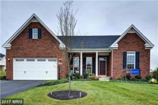 121 Hermitage Drive, Fredericksburg, VA 22407 (#SP9948856) :: Pearson Smith Realty