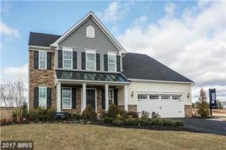 123 Hermitage Drive, Fredericksburg, VA 22407 (#SP9948872) :: Pearson Smith Realty