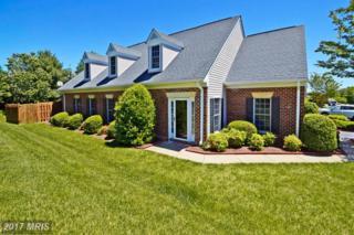 11223 Macon Drive, Fredericksburg, VA 22407 (#SP9949313) :: Pearson Smith Realty