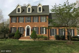 13202 Chandler Court, Fredericksburg, VA 22407 (#SP9949495) :: Pearson Smith Realty