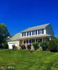 12103 Ashleigh Park Boulevard, Fredericksburg, VA 22407 (#SP9950437) :: Pearson Smith Realty