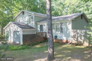 12411 Quarter Charge Drive, Spotsylvania, VA 22551 (#SP9951816) :: Pearson Smith Realty