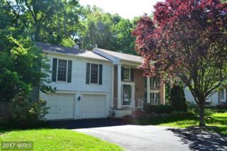 9905 Millstone Drive, Fredericksburg, VA 22407 (#SP9952203) :: Pearson Smith Realty