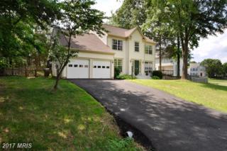 6702 Lakeland Way, Fredericksburg, VA 22407 (#SP9954167) :: Pearson Smith Realty