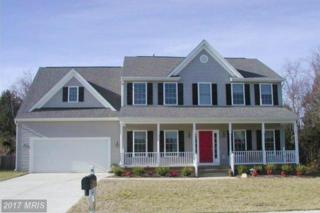 3122 Terra Springs Drive, Fredericksburg, VA 22408 (#SP9955099) :: Pearson Smith Realty