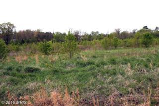 Stableside Lane, Fredericksburg, VA 22405 (#ST9622486) :: Pearson Smith Realty