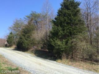 Hilda Lane W, Stafford, VA 22556 (#ST9622498) :: Pearson Smith Realty