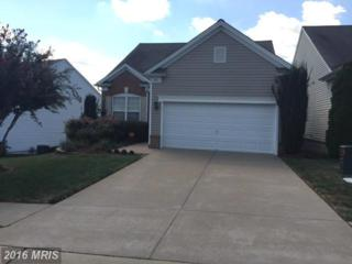 156 Bridgewater Circle, Fredericksburg, VA 22406 (#ST9769611) :: Pearson Smith Realty