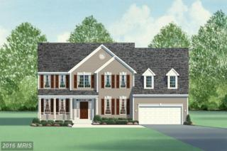 Cranes Bluff Ct., Fredericksburg, VA 22405 (#ST9816384) :: Pearson Smith Realty