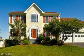 53 Country Manor Drive, Fredericksburg, VA 22406 (#ST9838606) :: Pearson Smith Realty