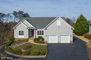 3 Pebble Place, Fredericksburg, VA 22405 (#ST9839625) :: Pearson Smith Realty