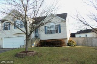 3 Little Field Drive, Fredericksburg, VA 22405 (#ST9840239) :: Pearson Smith Realty