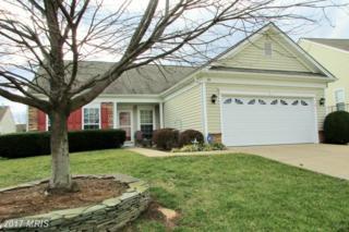 20 Castlewood Drive, Fredericksburg, VA 22406 (#ST9850364) :: Pearson Smith Realty