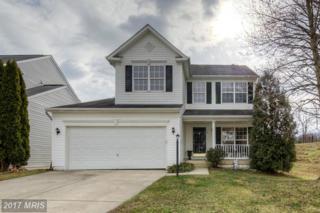 8 Azalea Street, Fredericksburg, VA 22406 (#ST9851324) :: Pearson Smith Realty