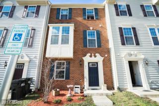 211 Spring Park Lane, Fredericksburg, VA 22405 (#ST9856431) :: Pearson Smith Realty