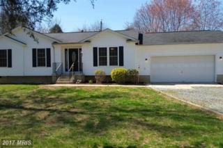 615 Grafton Street, Fredericksburg, VA 22405 (#ST9857002) :: Pearson Smith Realty