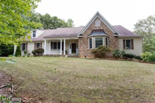 78 Wateredge Lane, Fredericksburg, VA 22406 (#ST9858160) :: Pearson Smith Realty