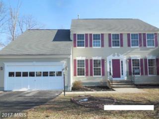 114 Basalt Drive, Fredericksburg, VA 22406 (#ST9858528) :: Pearson Smith Realty