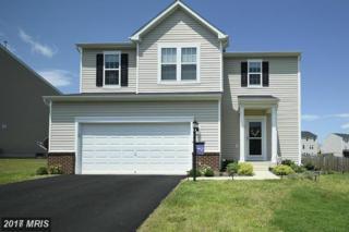 54 Ivy Spring Lane, Fredericksburg, VA 22406 (#ST9859526) :: Pearson Smith Realty