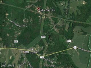 1 Ruby Glen Lane, Fredericksburg, VA 22405 (#ST9859659) :: LoCoMusings