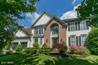 9 Ludwell Lane, Stafford, VA 22554 (#ST9860017) :: Pearson Smith Realty