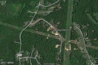6 Ruby Glen Lane, Fredericksburg, VA 22405 (#ST9860043) :: LoCoMusings