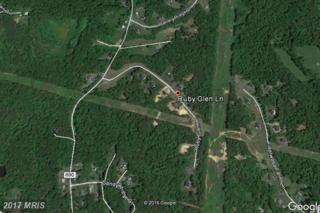 8 Ruby Glen Lane, Fredericksburg, VA 22405 (#ST9860046) :: LoCoMusings