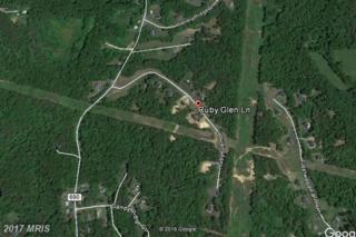 17 Ruby Glen Lane, Fredericksburg, VA 22405 (#ST9860051) :: LoCoMusings