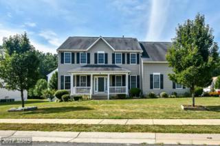 9 Shadowbrook Lane, Fredericksburg, VA 22406 (#ST9860668) :: Pearson Smith Realty