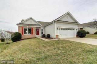 6 Goose Creek Circle, Fredericksburg, VA 22406 (#ST9860828) :: Pearson Smith Realty