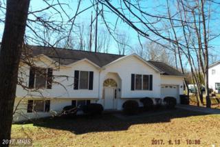 1606 Sherwood Drive, Fredericksburg, VA 22405 (#ST9862192) :: Pearson Smith Realty