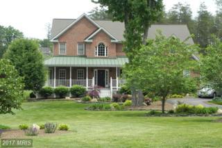 28 Blackberry Lane, Fredericksburg, VA 22406 (#ST9863352) :: LoCoMusings