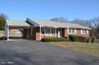 702 Culpeper Street, Fredericksburg, VA 22405 (#ST9863798) :: Pearson Smith Realty