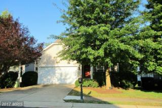19 Herndon Court, Fredericksburg, VA 22406 (#ST9864027) :: Pearson Smith Realty