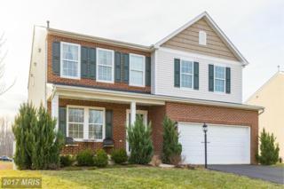 4 Cool Well Court, Fredericksburg, VA 22406 (#ST9864116) :: Pearson Smith Realty