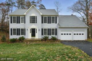 12 Bellamy Lane, Fredericksburg, VA 22406 (#ST9864554) :: Pearson Smith Realty