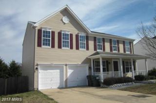 17 Halcomb Lane, Stafford, VA 22556 (#ST9867374) :: LoCoMusings